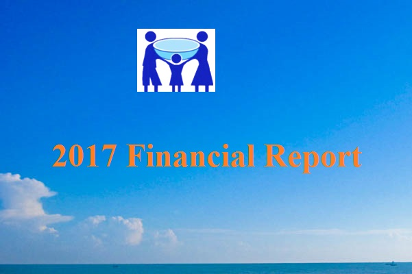 2017 Financial Statement